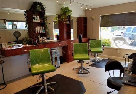 Established hair salon for sale in Downtown San Carlos